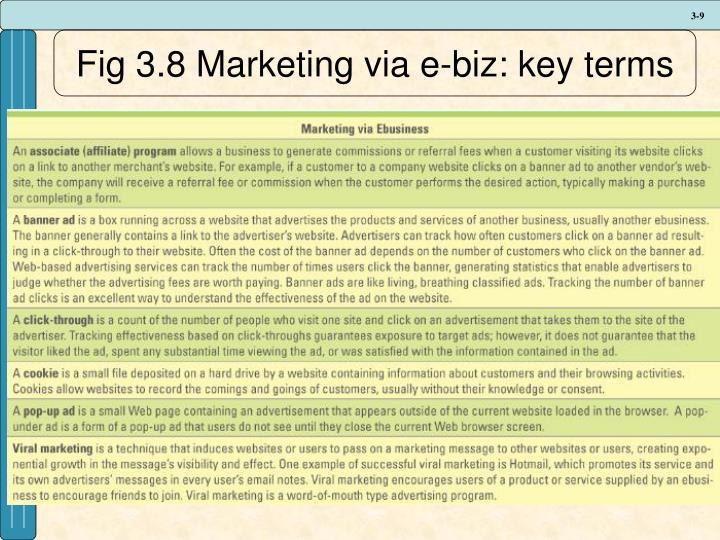 Fig 3.8 Marketing via e-biz: key terms