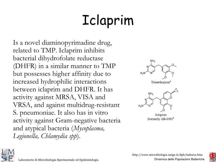 Iclaprim