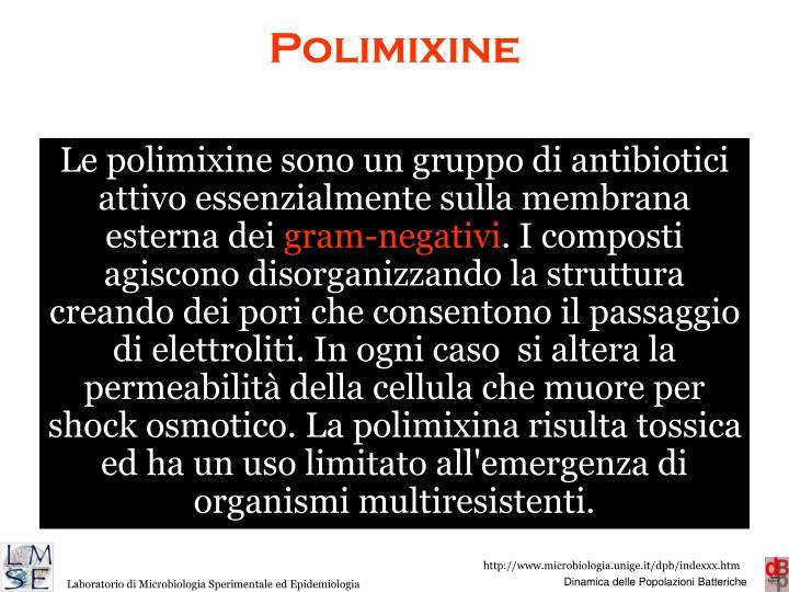 Polimixine