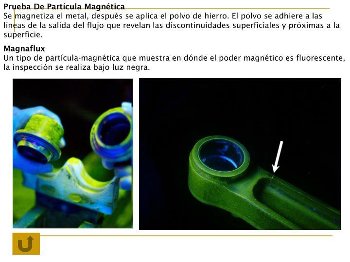 Prueba De Partícula Magnética