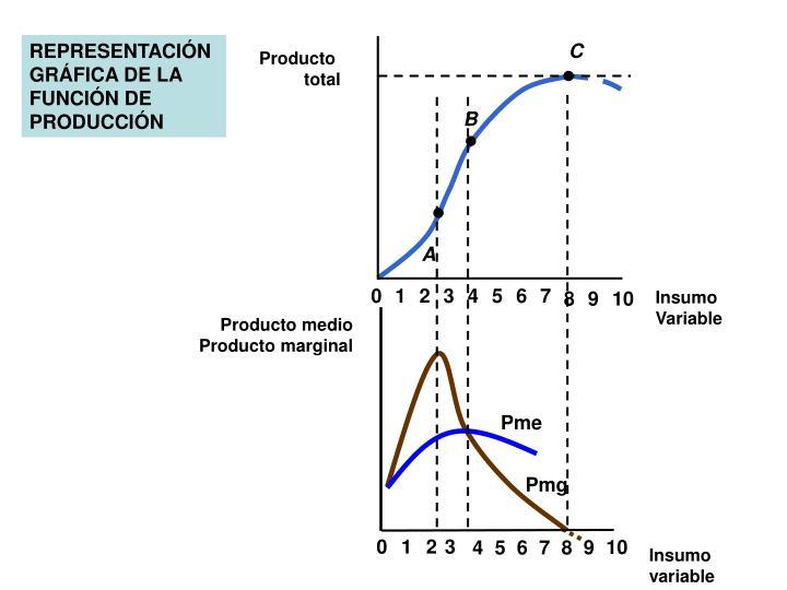 REPRESENTACIÓN GRÁFICA DE LA FUNCIÓN DE PRODUCCIÓN