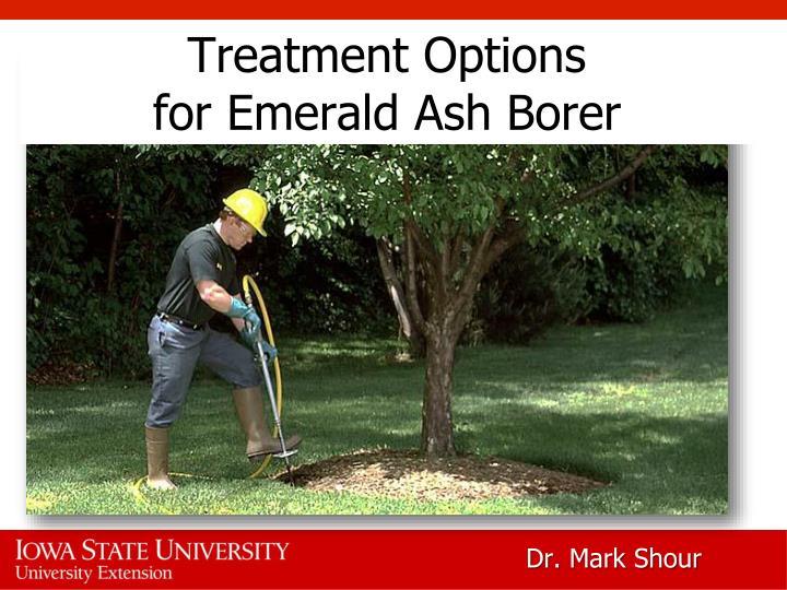 treatment options for emerald ash borer n.