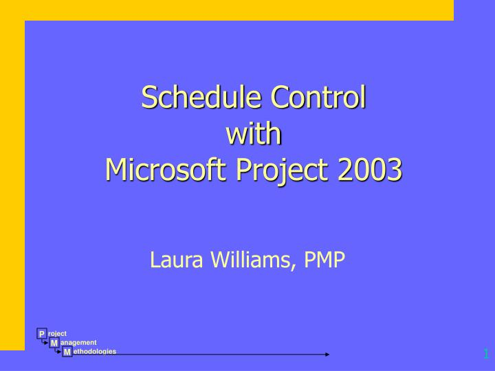 Schedule control with microsoft project 2003