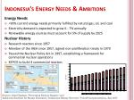 indonesia s energy needs ambitions