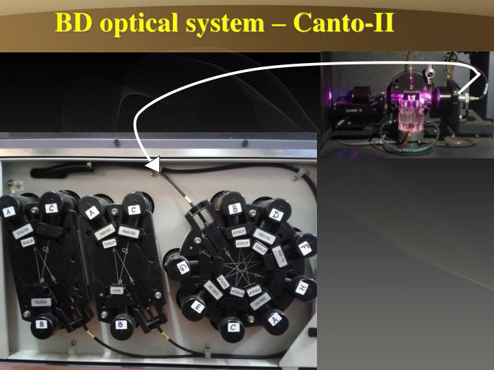 BD optical system – Canto-II