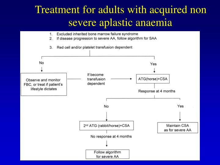 Treatment for adults with acquired non severe aplastic anaemia