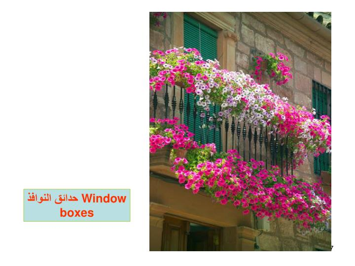 حدائق النوافذ