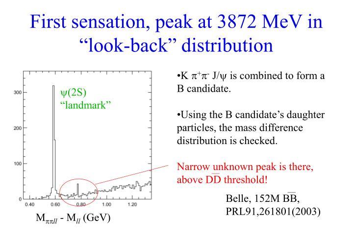 """First sensation, peak at 3872 MeV in """"look-back"""" distribution"""