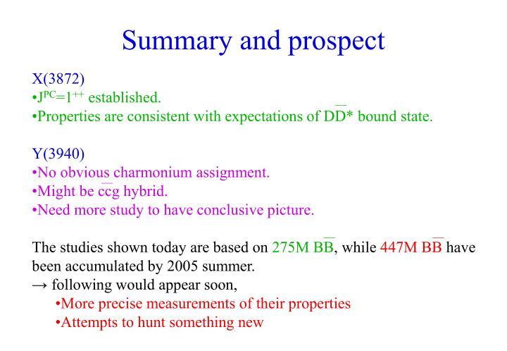 Summary and prospect