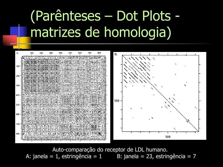 (Parênteses – Dot Plots - matrizes de homologia)