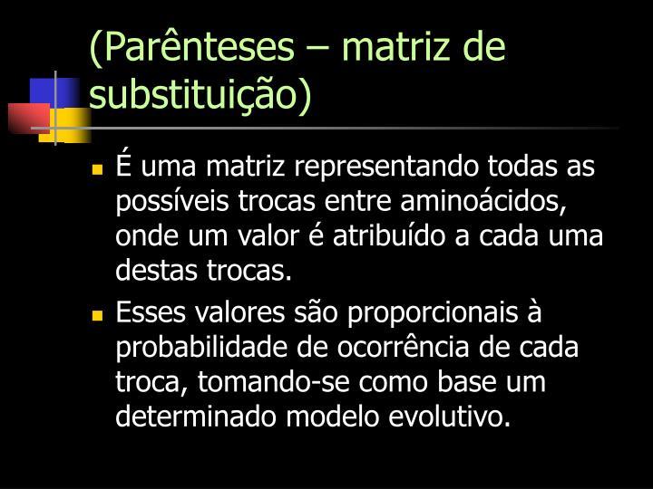 (Parênteses – matriz de substituição)