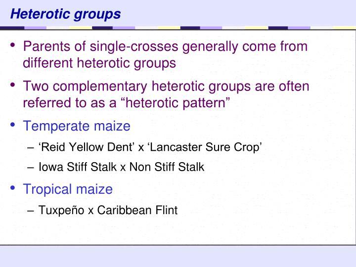 Heterotic groups