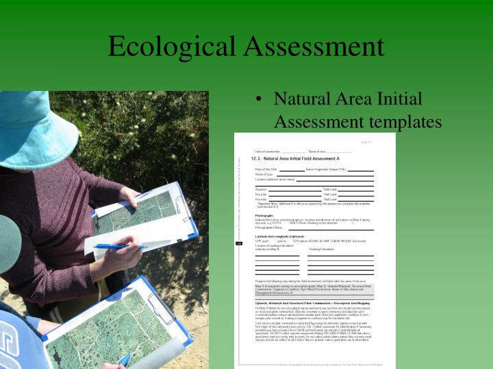 Ecological Assessment