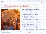 photon multiplicity detector