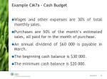 example cm7a cash budget