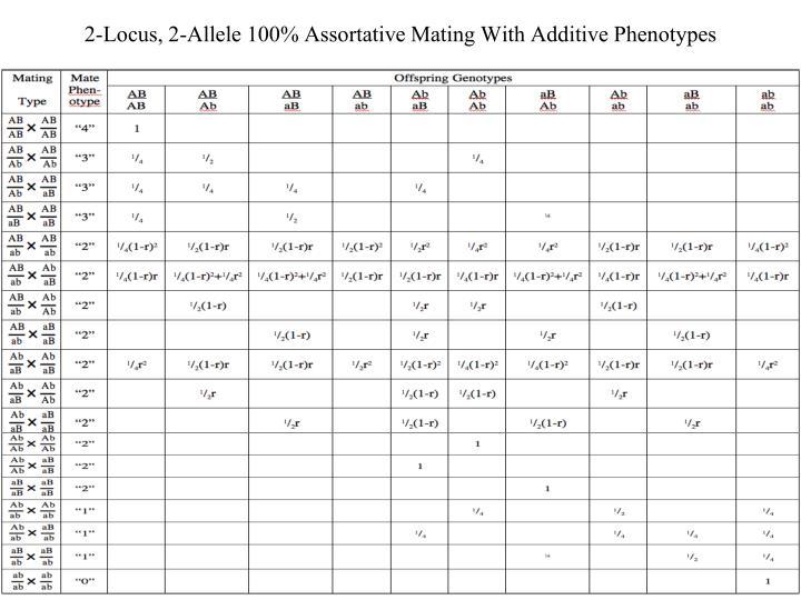 2-Locus, 2-Allele 100% Assortative Mating With Additive Phenotypes