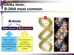 dnas form b dna most common