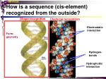 how is a sequence cis element recognized from the outside