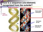 how is a sequence cis element recognized from the outside1