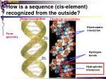 how is a sequence cis element recognized from the outside3