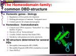 the homeodomain family common dbd structure