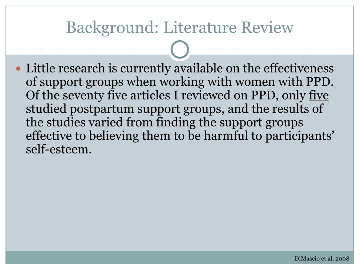Background: Literature Review