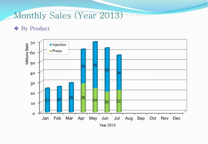 Monthly Sales (Year 2013)