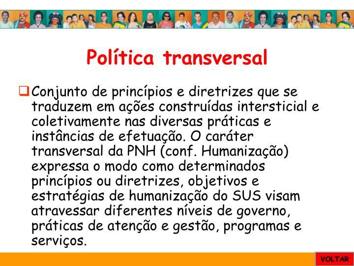 Política transversal