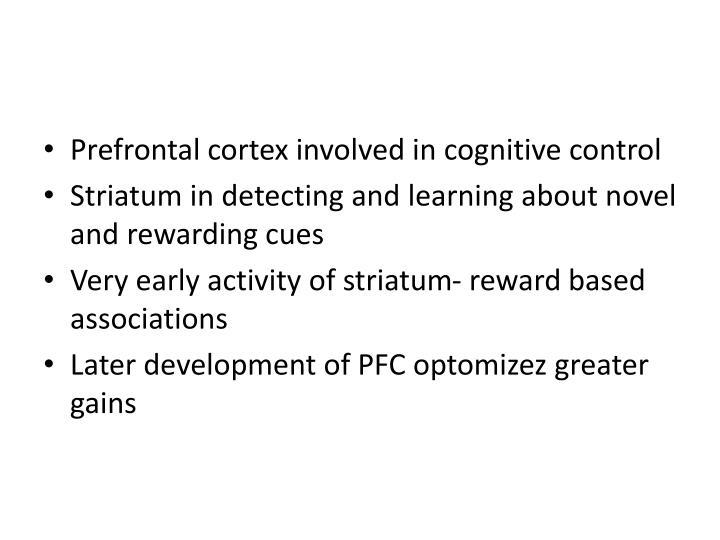 Prefrontal cortex involved in cognitive control