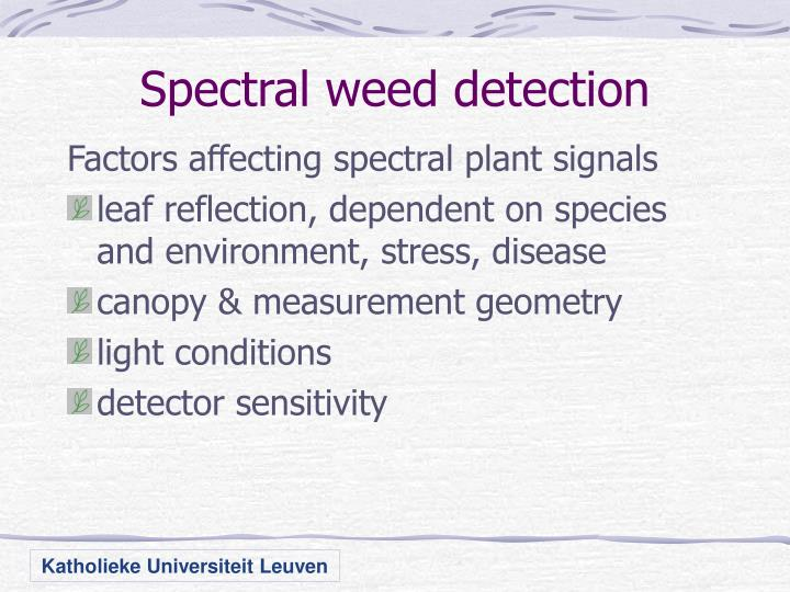 Spectral weed detection