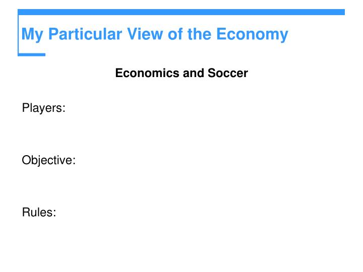 My Particular View of the Economy