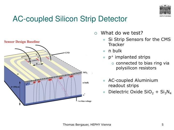 AC-coupled Silicon Strip Detector