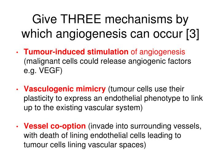 Give THREE mechanisms by which angiogenesis can occur [3]