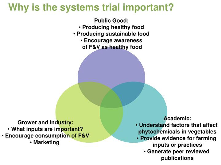 Why is the systems trial important?