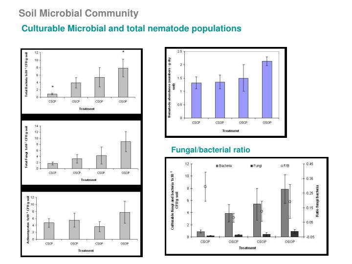Soil Microbial Community