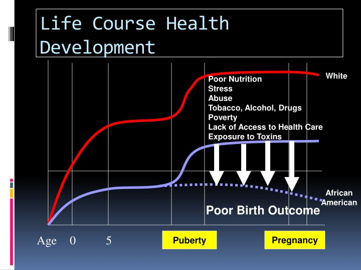 Life Course Health Development