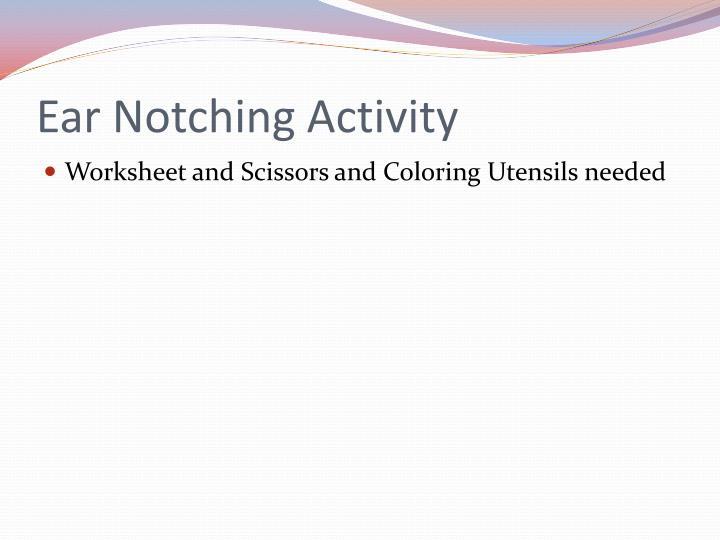 Ear Notching Activity