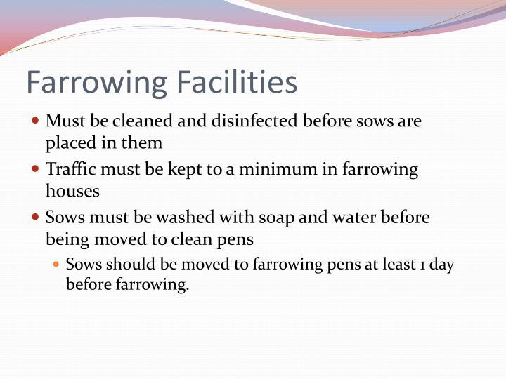 Farrowing Facilities