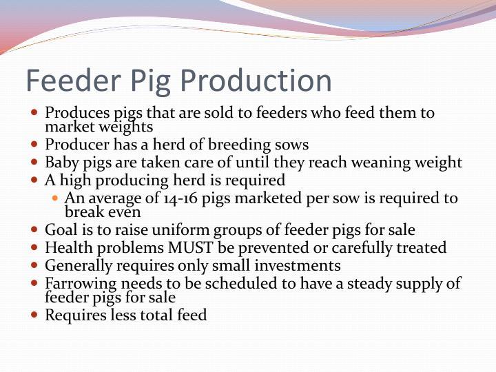 Feeder Pig Production