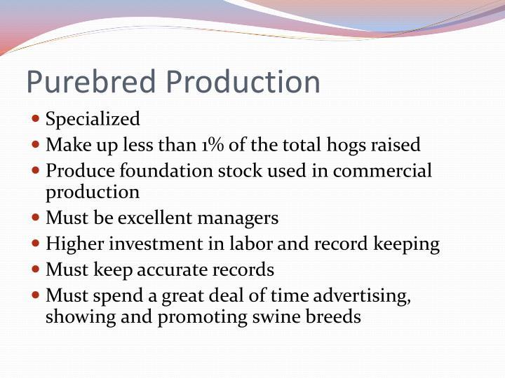Purebred Production