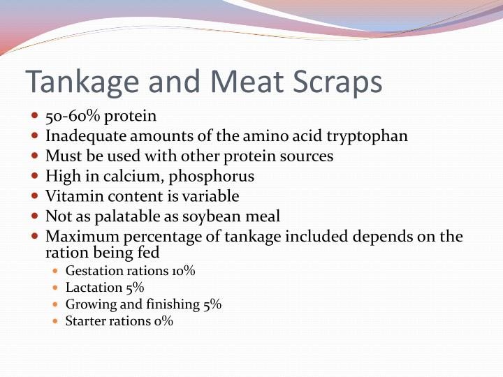 Tankage and Meat Scraps
