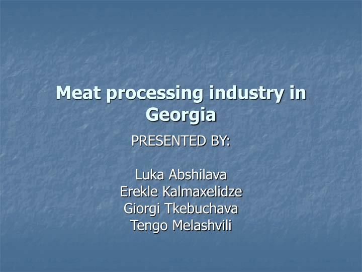 meat processing industry in georgia n.