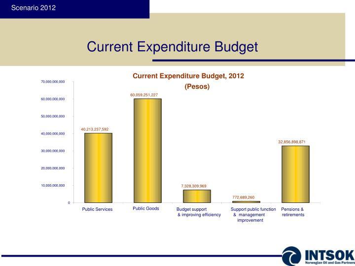 Current Expenditure Budget