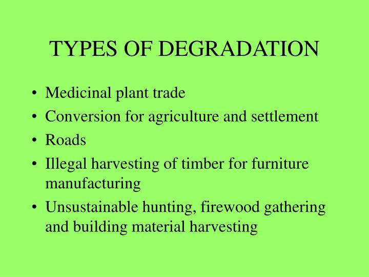 TYPES OF DEGRADATION