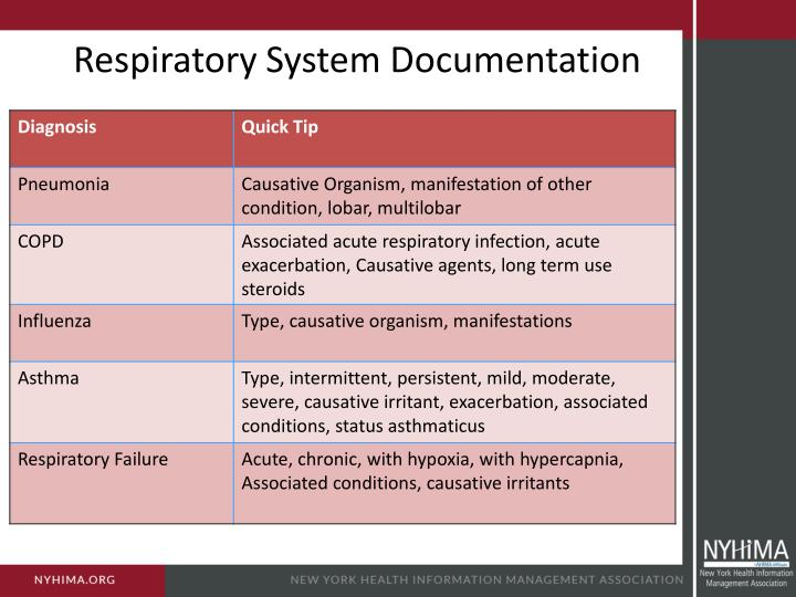Respiratory System Documentation