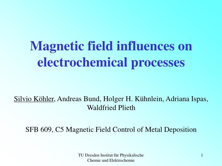 Magnetic field influences on electrochemical processes