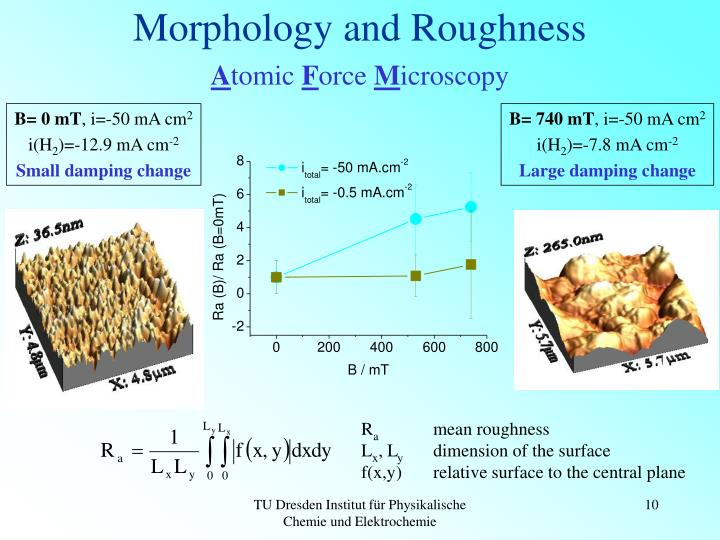 Morphology and Roughness