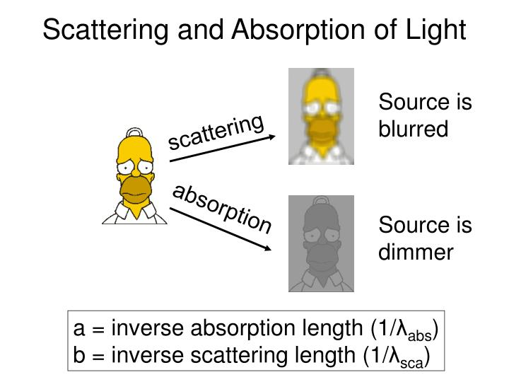 Scattering and Absorption of Light
