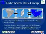 niche models basic concept