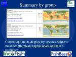 summary by group